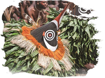 Flynn's Tours is a tour operator specialising in Papua New Guinea and also Japan.