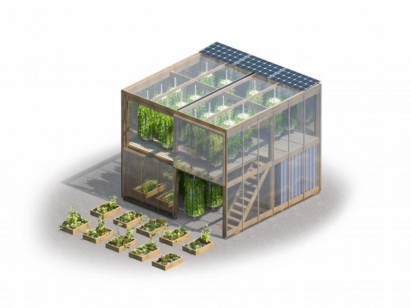 Dentro do sistema é possível produzir ervas, verduras, legumes e plantas frutíferas.