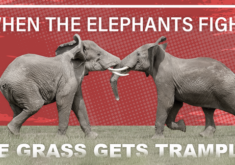 When The Elephants Fight, The Grass Gets Trampled