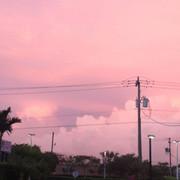 pink sky background.jpg