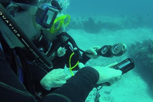 Multilevel Diver - £99