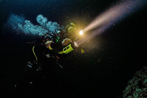 Night Diver - £149
