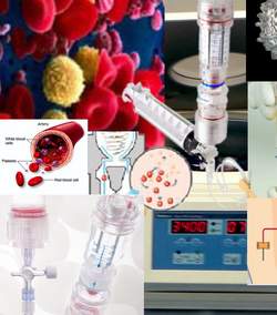 PRP Regenerative Medicine Marbella