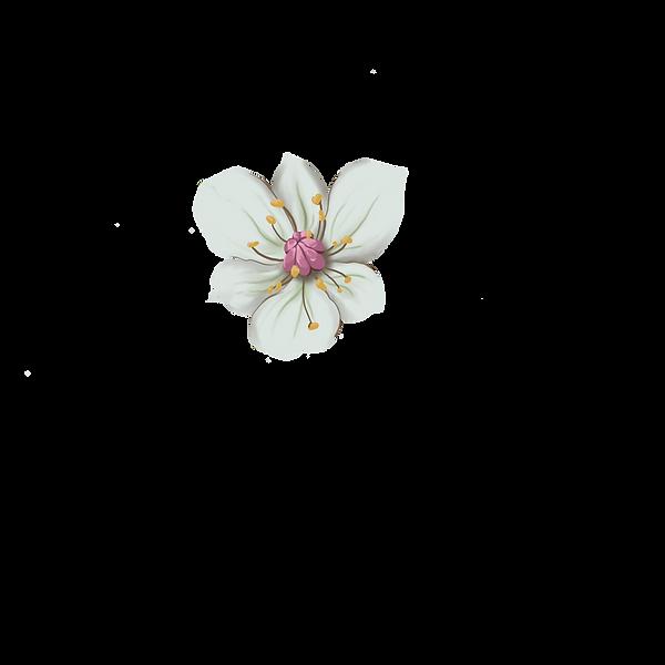 wind rush flower head.png