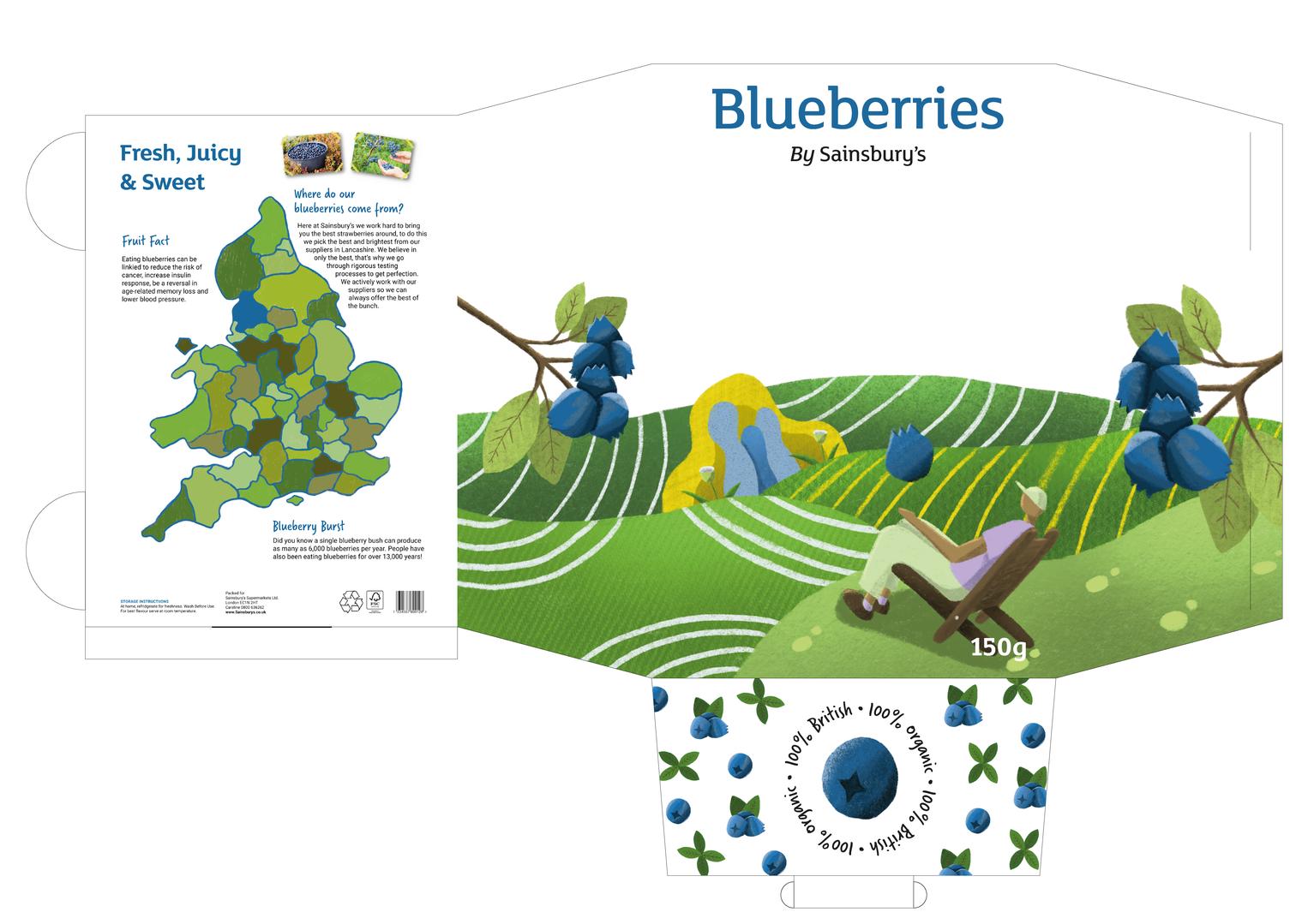 Aidan_Wogan_Packaging_Net_Blueberry_2-05