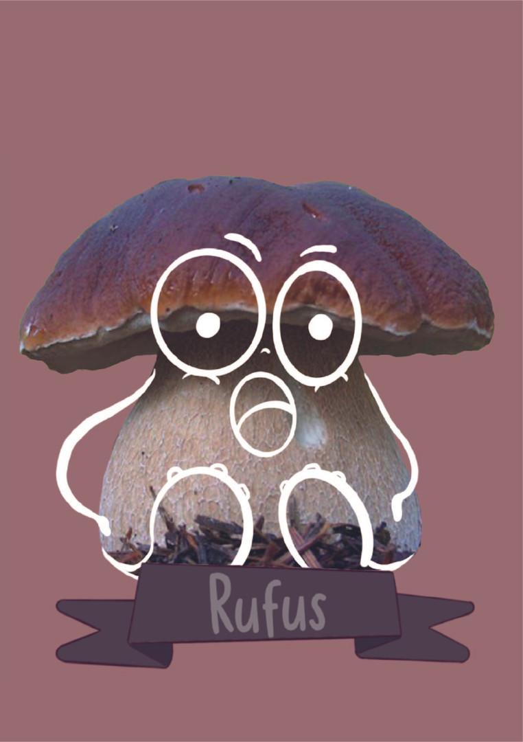 rufus.jpg