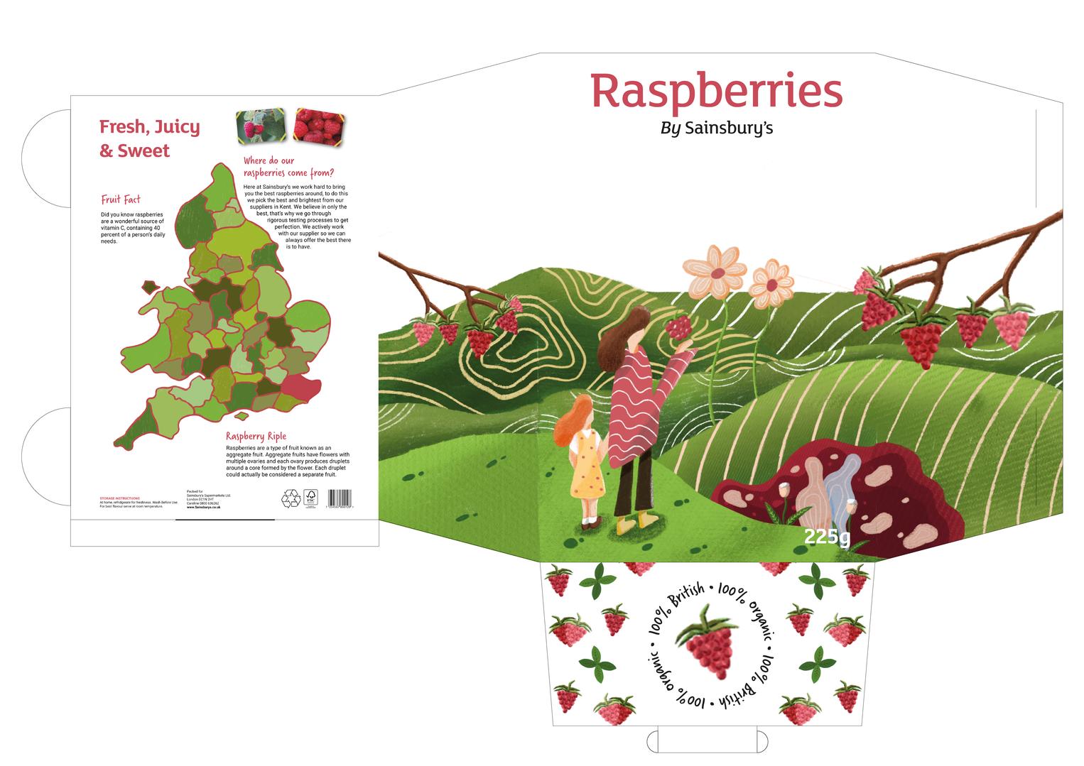 Aidan_Wogan_Packaging_Net_Raspberry_2-05
