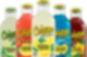 HomePage_Flavors_Bottles_image-fs8.png