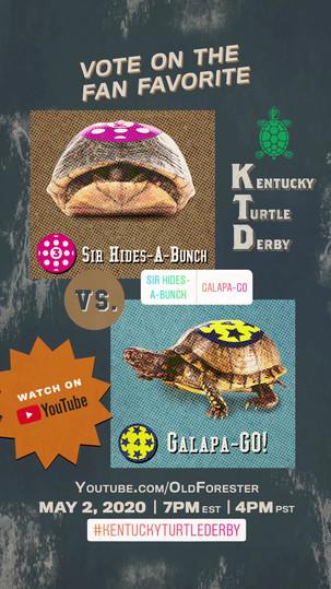 Turtle_Pick 'em_Hides Galapa_v2.mp4