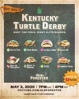 KTD-turtles-post.png