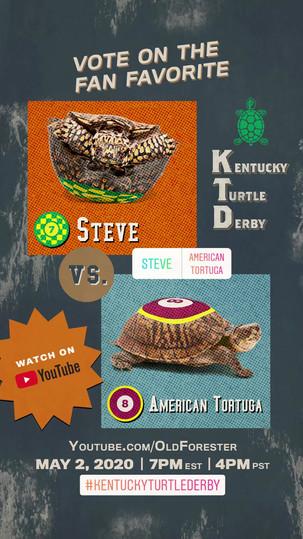 Turtle_Pick 'em_Steve American Tortuga_v