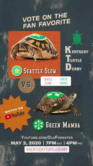 Turtle_Pick 'em_Seatle Slow Green Mamba_