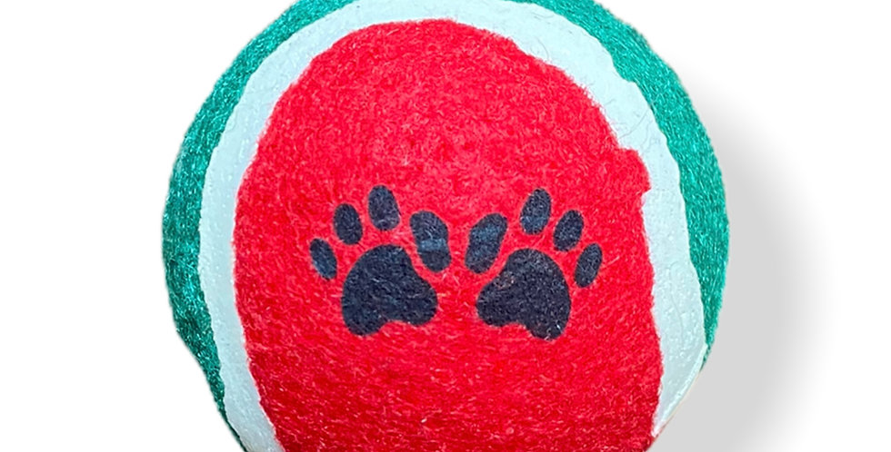 Bouncy Ball Dog Toy