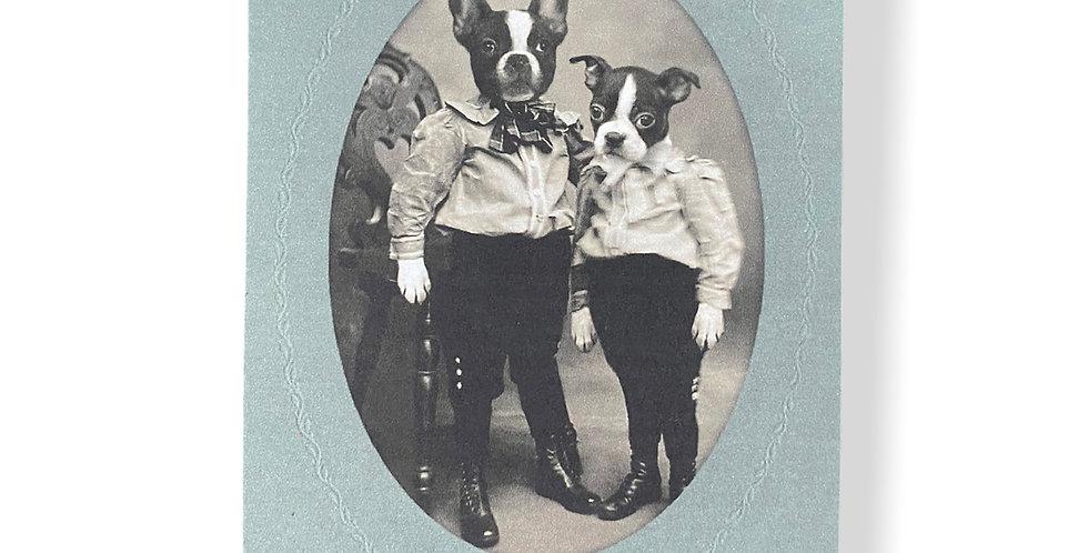 Vintage Dog Postcard