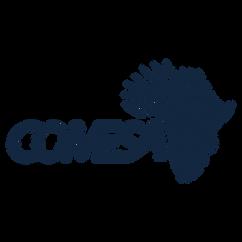 Comesa in advertising agency in egypt
