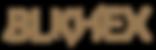 BLKHEX_logo.png