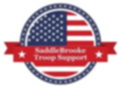 cropped-STS-logo.hi-res-2.jpg