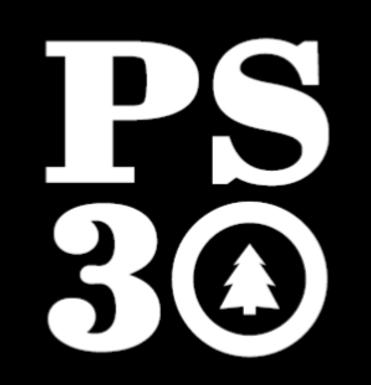 PS 30 Staff Sale