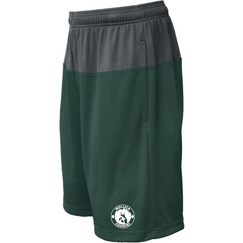 Mullica Pennant Duel Shorts