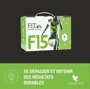 Fit F15