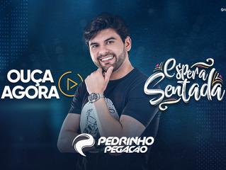 """Pedrinho Pegação lança música """"Espera Sentada"""