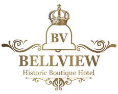 BV-logo_edited.png