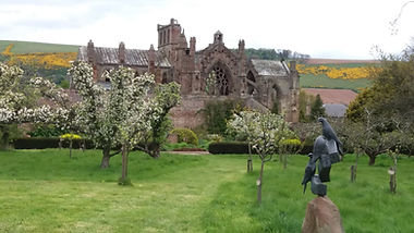 Melrose Abbey from the orchards, photo by Fiona Mackenzie