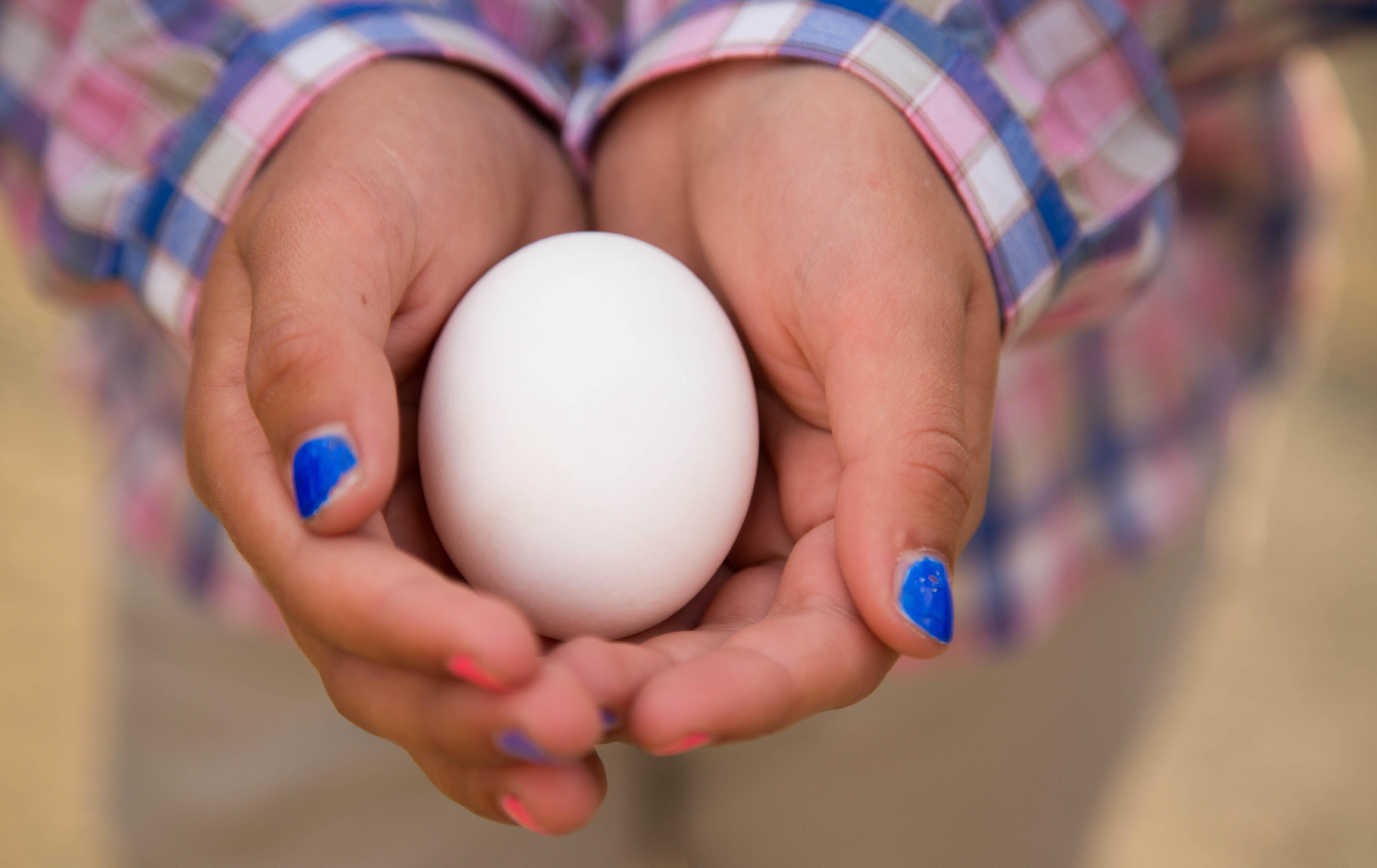 Farmer Ben's Eggs