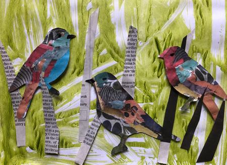 Sparrows feeding.jpg