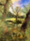 Great Linford ponds (1).jpg