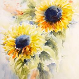 Sunflower Duo