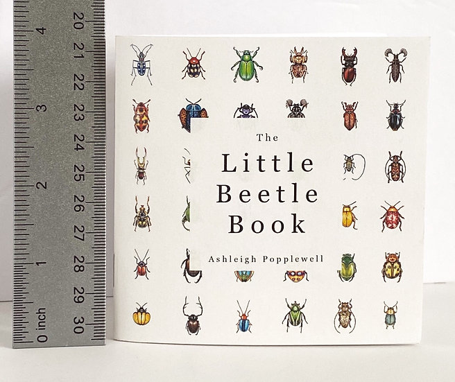The Little Beetle Book