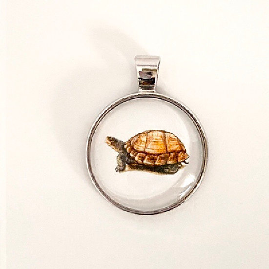Box Turtle Pendant Necklace
