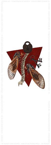 Cicadas with Padlock, Keys & Spine