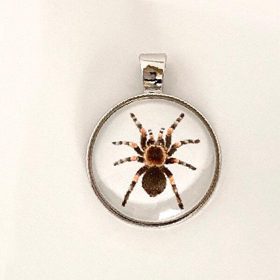 Tarantula Pendant Necklace