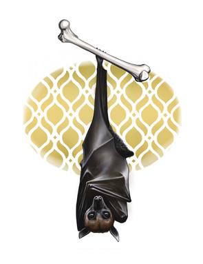Bat and Femur.jpg