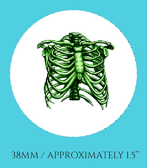 Green Rib Cage 38mm (1.5'') Handmade Glass Dome Magnet