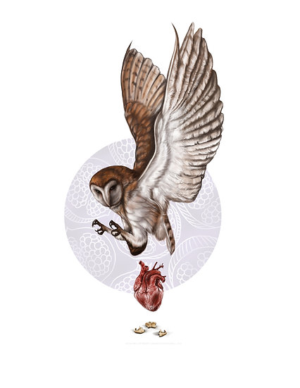 Owl and Heart with Hyoid