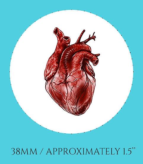 Human Heart 38mm (1.5'') Handmade Glass Dome Magnet