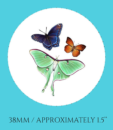 Flying Insects 38mm (1.5'') Handmade Glass Dome Magnet