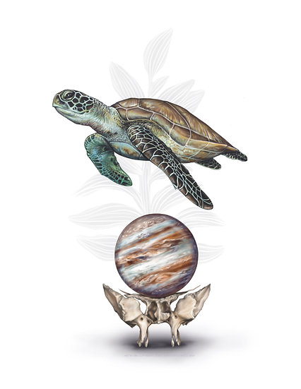 Sea Turtle with Sphenoid and Jupiter