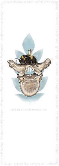 Bee and Vertebrae Bookmark