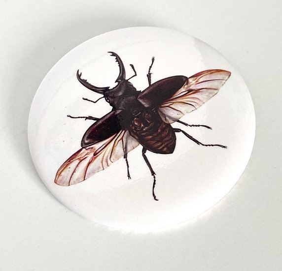 """3"""" Stag Beetle Pin"""
