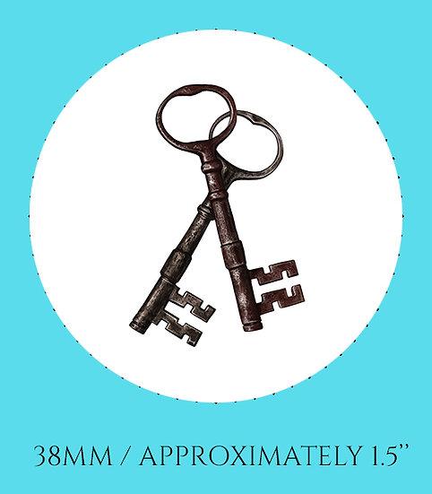 Skeleton Keys 38mm (1.5'') Handmade Glass Dome Magnet