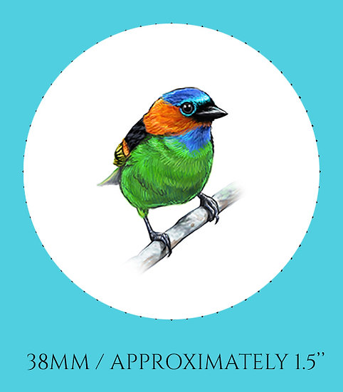 Finch 38mm (1.5'') Handmade Glass Dome Magnet