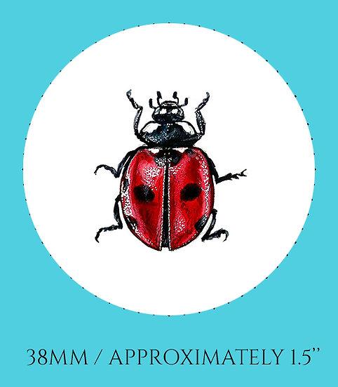 Ladybug 38mm (1.5'') Handmade Glass Dome Magnet