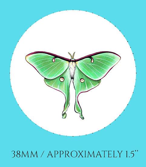 Luna Moth 38mm (1.5'') Handmade Glass Dome Magnet