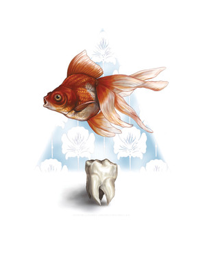 Goldfish and Tooth.jpg
