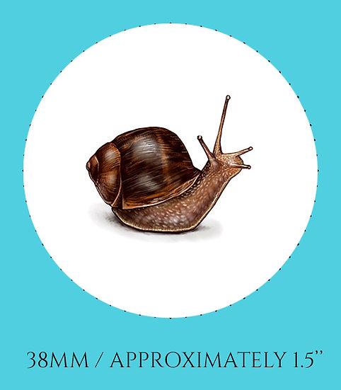Snail 38mm (1.5'') Handmade Glass Dome Magnet
