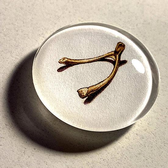 Wishbone 38mm (1.5'') Handmade Glass Dome Magnet